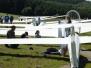 Menden2009
